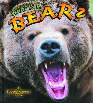 What Is a Bear? Bobbie Kalman
