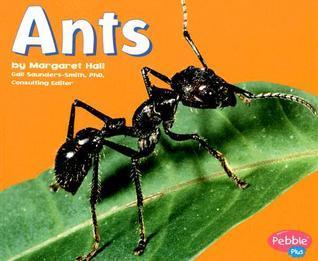 Ants (Bugs, Bugs, Bugs!)