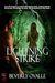 Lightning Strike by Beverly Ovalle