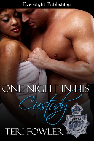 One Night in his Custody (Shades of Love, #1)