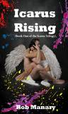 Icarus Rising (A Rock Star Erotic Romance, Book 1) (The Icarus Trilogy)