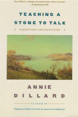 Essay teaching a stone to talk