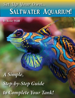 Set Up Your Own Saltwater Aquarium! Becky Wolff