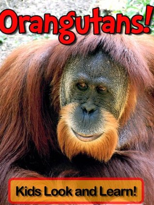 Orangutans! Learn About Orangutans and Enjoy Colorful Pictures - Look and Learn! (50+ Photos of Orangutans)  by  Becky Wolff