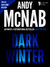 Dark Winter: (Nick Stone Book 6) USA only