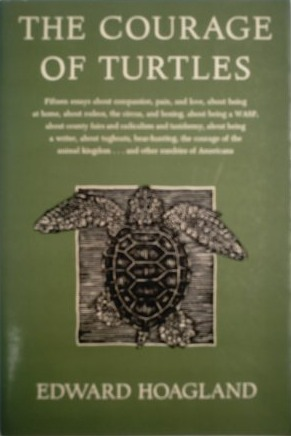 an analysis of the essay the courage of turtles by edward hoagland The problemi am often asked by students: how do i know when an essay is   have been deemed successful, and analyze how their endings were staged.