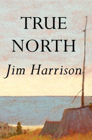 true north book about leadership review Destiny, with credit to professor nettifee brought the book true north: discover your authentic leadership into my life and i want to bring it into the.