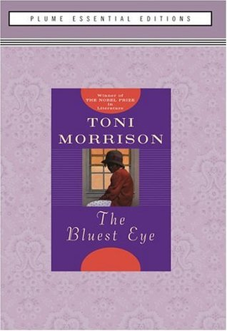 an overview of the novel beloved by toni morrison Beloved by toni morrison: free study guide / themes / biography / historical information cliff notes™ beloved: free online book summary by toni morrison.