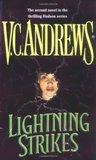 Lightning Strikes (Hudson, #2)
