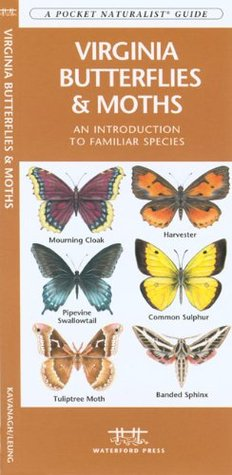 Virginia Butterflies & Moths: A Folding Pocket Guide to Familiar Species  by  James Kavanagh