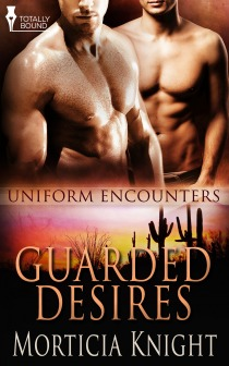 Guarded Desires (Uniform Encounters, #4)