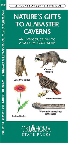 Natures Gifts to Alabaster Caverns: An Introduction to a Gypsum Ecosystem James Kavanagh