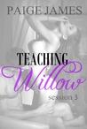 Teaching Willow: Session Three  (Teaching Willow, #3)