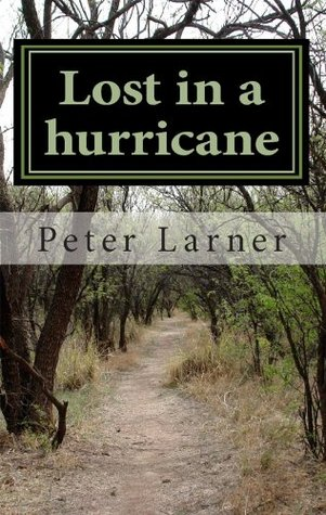 Lost in a hurricane  by  Peter Larner