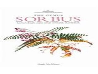 Genus Sorbus: mountain ash and other rowans Hugh A. McAllister