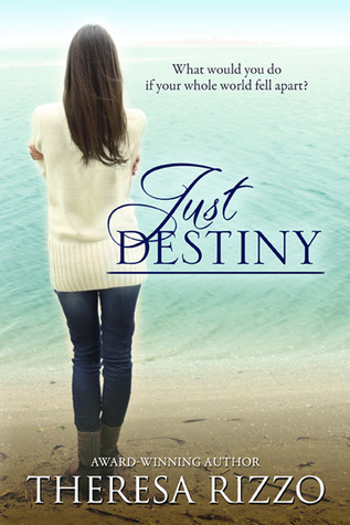 Book 2: JUST DESTINY