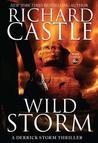 Wild Storm (Derrick Storm, #2)
