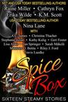 Spice Box (Sixteen Steamy Stories)