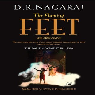 The Flaming Feet and Other Essays:The Dalit Movement in India D.R. Nagaraj