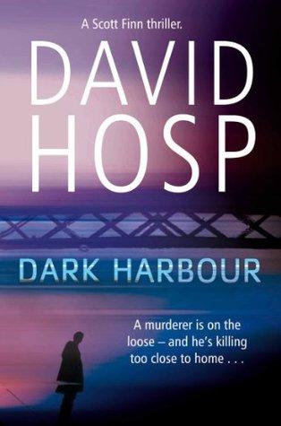 Dark Harbour: A Scott Finn Novel 1 (Scott Finn 1)  by  David Hosp