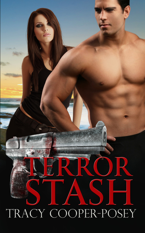 Terror Stash: A Romantic Thriller  by  Tracy Cooper-Posey