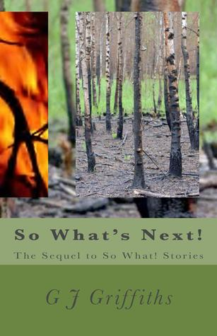 So What's Next! (SoWhat! Stories, #2)