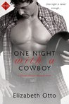 One Night with a Cowboy (Paint River Ranch, #2)