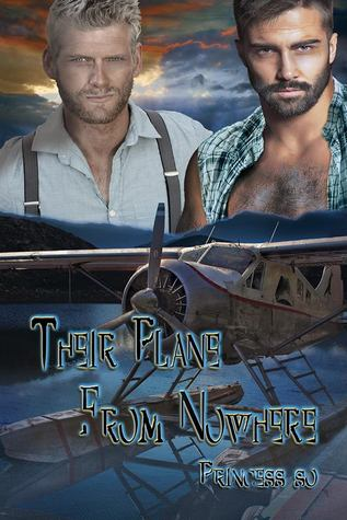 Series Review: Their Plane from Nowhere and Big Spoon & Teddy Bear (Teddy Bear Collection 1&2) by Princess S.O.