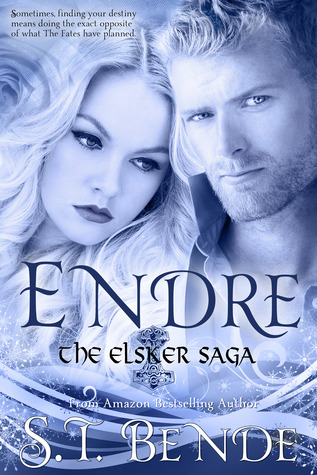 REVIEW TOUR - Endre by ST Bende