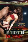 One Night in Boise (City Nights Series, book 1)