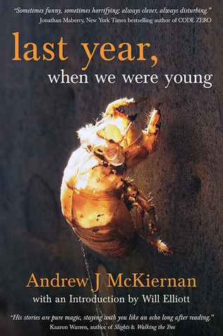 Last Year, When We Were Young by Andrew J. McKiernan
