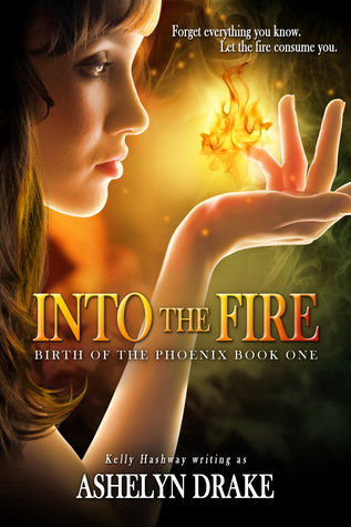 Into the Fire by Ashelyn Drake book cover