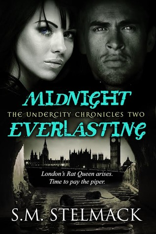 Review: Midnight Everlasting by S.M. Stelmack