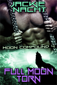 Full Moon Torn (Moon Compound, #5)