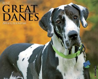 Just Great Danes 2014 Wall Calendar  by  NOT A BOOK