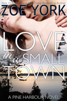 Love in a Small Town (Pine Harbour #1)
