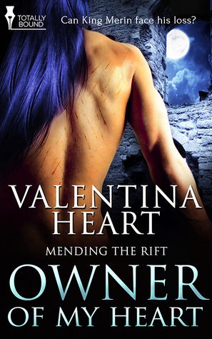 Recent Release Review: Owner Of My Heart by Valentina Heart
