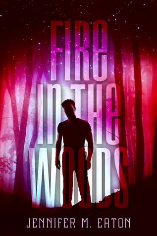 https://www.goodreads.com/book/show/22674815-fire-in-the-woods