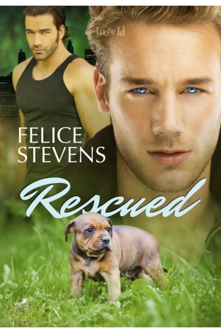 Recent Release Review: Rescued by Felice Stevens