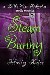 Steam Bunny: A Little Miss Kick-Ass Erotic Novella