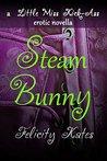 Steam Bunny: A Little Miss Kick-Ass Erotic Novella
