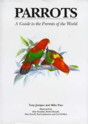 Parrots  by  Tony Juniper