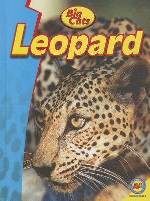 Leopard  by  Steve Goldsworthy