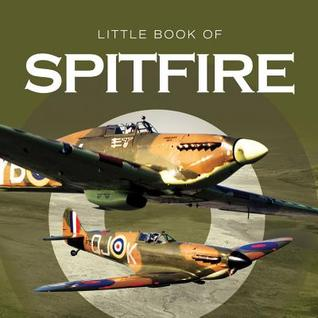 Spitfire  by  David Curnock