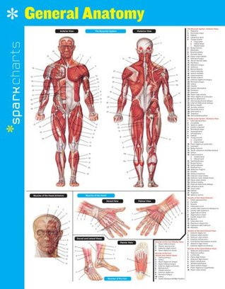 General Anatomy SparkCharts SparkNotes