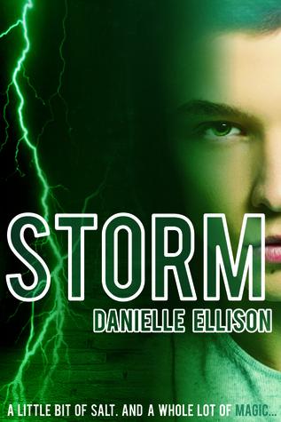 Storm by Danielle Ellison