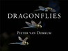Dragonflies: Magnificent Creatures of Water, Air, and Land
