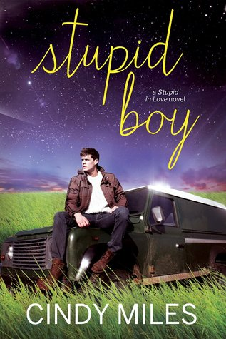 https://www.goodreads.com/book/show/22698394-stupid-boy