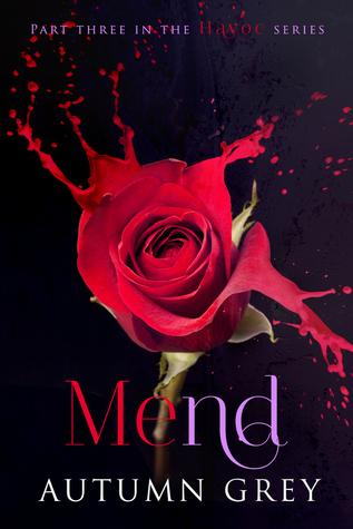 Mend (Havoc, #3)