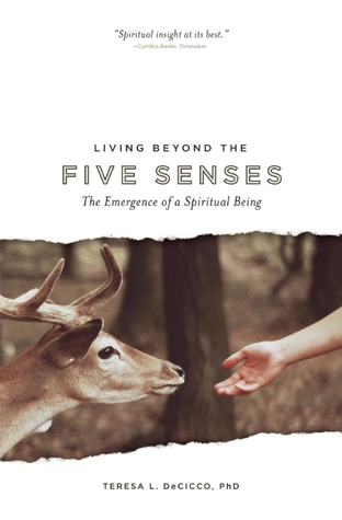 Living Beyond the Five Senses by Teresa L. DeCicco